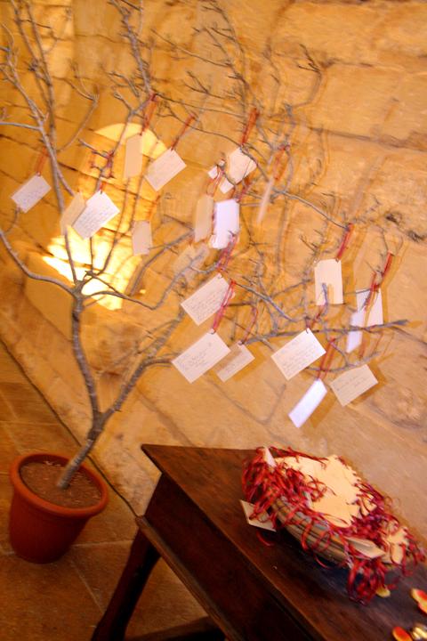 palazzo palina ta cenc gozo wedding wishing tree orange